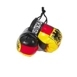 Mini Boxing Gloves - Deutschland (Germany)