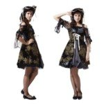 Halloween Costume Party Pirates of the Caribbean Female Embroidery Pirate Dresses by TRJAQB