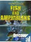 Fish and Amphibians (Popular's Young Discoverer)