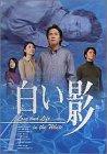 DVD白い影(4)[DVD]