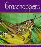 img - for Grasshoppers (Insects) book / textbook / text book