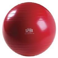 SPRI Professional Xercise Workout Swiss Ball Silver (75cm)