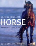 img - for Encyclopedia of the Horse book / textbook / text book