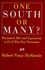 img - for One South or Many?: Plantation Belt and Upcountry in Civil War-Era Tennessee book / textbook / text book