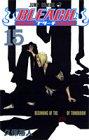 BLEACH -ブリーチ- 第15巻