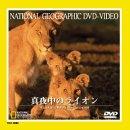 真夜中のライオン [DVD]
