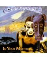 In Your Multitude
