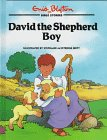 David the Shepherd Boy (Bible Stories) (1565077520) by Enid Blyton