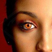 lentilles-de-contact-wolf-yeux-wolf-eye-lentilles-de-contact-colorees-pour-halloween-carnaval-sans-c