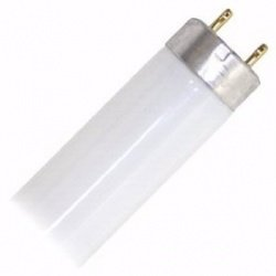 (Pack Of 10) F15T8/D 15-Watt Straight T8 Fluorescent Tube Light Bulb, Dayligh...