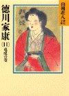 徳川家康(11) (山岡荘八歴史文庫 (33))