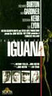 Night of the Iguana