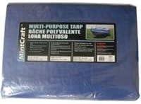 Mintcraft 30X60 Blue Poly Tarp 6001465