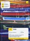 Irish (Teach Yourself) (Irish Edition)
