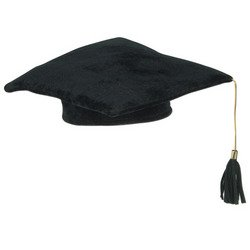 Plush Graduate Cap (black) Party Accessory  (1 count) (1/Pkg)