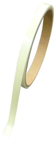 LTI 【避難時に便利な高輝度蓄光テープ】 蓄光テープ 5mm幅×1m AF0501T