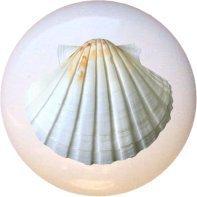 Ceramic Knob - Seashell #002 - Seashells (Seashell Door Knobs compare prices)