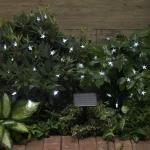 Solar Power Fairy Lights - Eco Friendly - Blue