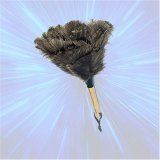 "Adams Bros - 12"" Ostrich Feather Duster, Wood handle.GREAT GIFT IDEA.by Adams Bros"