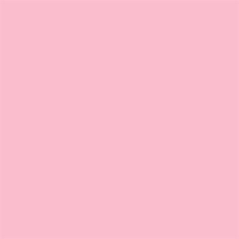 Folk Art 1611 Outdoor 2-Ounce Acrylic Paint, Baby Pink front-981586