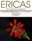 img - for Ericas of South Africa by Dolf Schumann (1995-01-01) book / textbook / text book