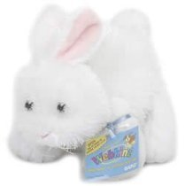 Webkinz Rabbit - Buy Webkinz Rabbit - Purchase Webkinz Rabbit (Ganz, Toys & Games,Categories,Stuffed Animals & Toys,Animals)