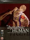 img - for Dynamic Human: the 3-D Visual Guide to Anatomy and Physiology (CD-ROM Macintosh) book / textbook / text book