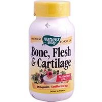 Nature'S Way - Bone Flesh & Cartilage 480 Mg. - 100 Capsules
