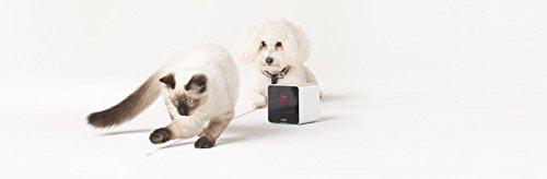 Petcube-Interactive-Wi-Fi-Pet-Camera