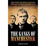 The Gangs of Manchester: The Story of the Scuttlers, Britain's First Youth Cultby Andrew Davies