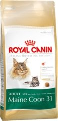 Royal Canin Cat Food - Maine Coon 31