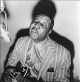 Image of Muddy Waters