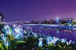 宮沢賢治 銀河鉄道の夜 The Celestial Railroad by KAGAYA 1000ピース 秋の軽便鉄道【光るパズル】 (50cm×75cm、対応パネルNo.10)