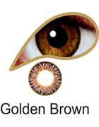 Coloured Contact Lenses with Free Solution & Case - Golden Brown (3 Months)