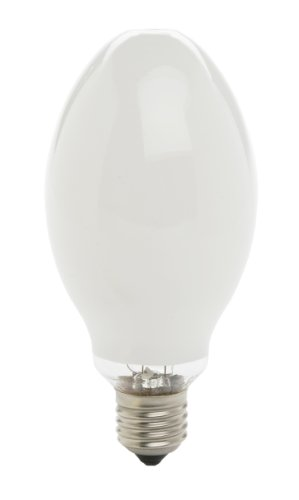 Designers Edge L779 125-Watt, 5000-Lumen Mercury Vapor Medium Base Lamp