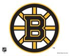 NHL Boston Bruins Multi-Use Colored Decal, 5″ x 6″