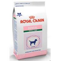 ROYAL CANIN Canine Dental Dry - Small Dog (8.8 lb)