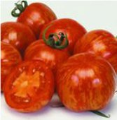 Rambling Red Stripe Tomato 5 seeds