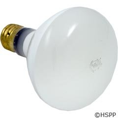 Hayward Spx0504z4 R 40 Mogul Base Bulb Replacement For Hayward Underwater Lights 500 Watt