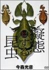大自然ライブラリー 「擬態する昆虫」 [DVD]