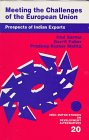 img - for Meeting the Challenges of the European Union: Prospects of Indian Exports (Indo-Dutch Studies on Development Alternatives series) book / textbook / text book