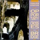 Opportunity Crosses the Bridge by Forever Einstein (2003-02-25)