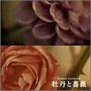 フジテレビ系(東海テレビ制作)全国ネット連続ドラマ「牡丹と薔薇」オリジナル・サウンドトラック