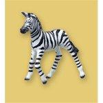 Zebra & Foal - 1