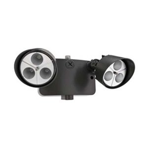 Security Light, Dual Motion, Bronze