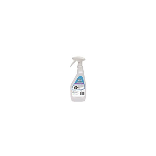 2work-2w04557-carpet-spot-and-stain-remover-750-ml