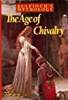 Age of Chivalry & Legends P/C