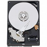 WESTERN DIGITAL 3.5インチ内蔵HDD 500GB Serial-ATA3.0Gb 7200rpm 16MB 320GB/1platter WD5000AAKS-A7B0