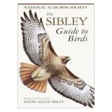 The Sibley Guide to Birds ~ David Allen Sibley