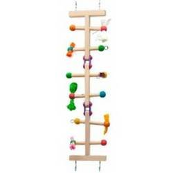 Bird Supplies Challenge Ladder Medium